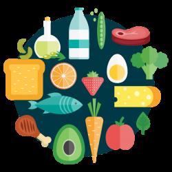 los alimentos y la dieta balanceada